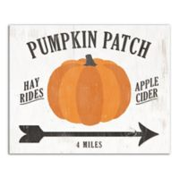 "Designs Direct ""Pumpkin Patch"" 16-Inch x 20-Inch Canvas Wall Art"