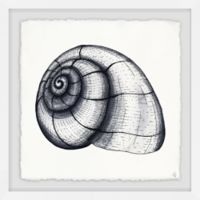 Marmont Hill Nautilus Shell 18-Inch Squared Framed Wall Art