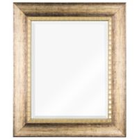23-Inch x 27-Inch Beveled Rectangular Vanity Wall Mirror in Wood Grain