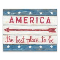 America 28-Inch x 22-Inch Wood Wall Art