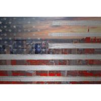 Marmont Hill City Behind the Flag 24-Inch x 16-Inch Aluminum Wall Art