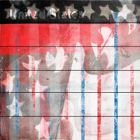 Marmont Hill Patriotic Birds 40-Inch x 40-Inch White Wood Wall Art