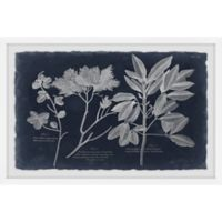 Marmont Hill Foliage on Navy VII 24-Inch x 16-Inch Framed Wall Art
