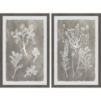 Marmont Hill 2-Piece Plant Structure 24-Inch x 18-Inch Framed Wall Art Set