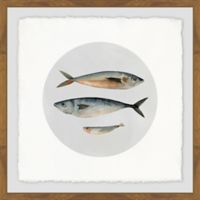 Marmont Hill Three Fish III 12-Inch Squared Framed Wall Art