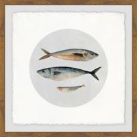 Marmont Hill Three Fish III 18-Inch Squared Framed Wall Art