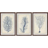 Marmont Hill 3-Piece Indigo Coral VII 36-Inch x 18-Inch Framed Wall Art Set