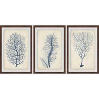 Marmont Hill 3-Piece Indigo Coral VII 48-Inch x 24-Inch Framed Wall Art Set