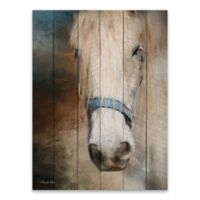Old Grey Mare Printed 18-Inch x 24-Inch Canvas Wall Art