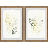 Marmont Hill 2-Piece Seed Spectrum III 24-Inch x 18-Inch Framed Wall Art Set