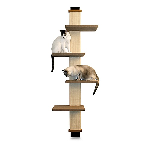 Smartcat Cat Climber Bed Bath Amp Beyond