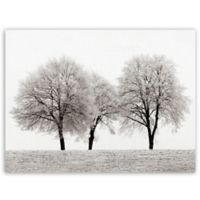 "Masterpiece Art Gallery Ilona Wellmann 3 Trees 24"" x 18"" Canvas Wall Art in White"