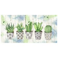 Potted Succulents on Wood 34-Inch x 17-Inch Canvas Wall Art
