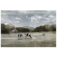 Country Satisfaction 40-Inch x 30-Inch Canvas Wall Art