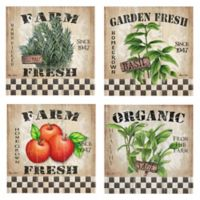 Fresh Farm 12-Inch Square Canvas Wall Art (Set of 4)