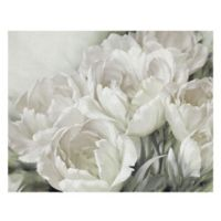 Angelique Tulips II 28-Inch x 22-Inch Canvas Wall Art