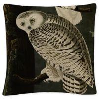 John James Snowy Owl Square Throw Pillow