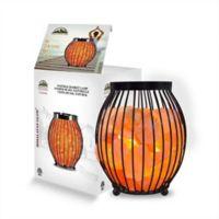 Himalayan Glow Lantern Style Salt Lamp, 10 Lb in Metal/natural