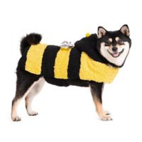 Halloween Pet X-Small Bumble Bee Costume
