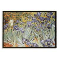 Irises by Vincent Van Gogh Wall Art