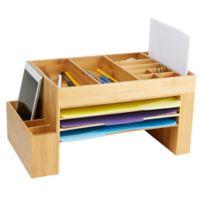 Mind Reader 16 Compartment Desk File Organizer in Brown
