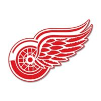 NHL Detroit Red Wings 14-Inch x 6-Inch Laser Cut Street Sign