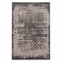 Linon Home Charisma Trellis 2' x 3' Accent Rug in Grey