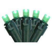 Northlight 17.5-Foot 50-Light String Lights in Green