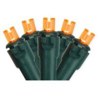 Northlight 17.5-Foot 50-Light String Lights in Orange