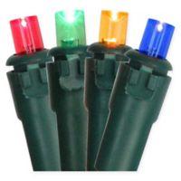 Northlight 17.5-Foot 50-Light Multicolor String Lights