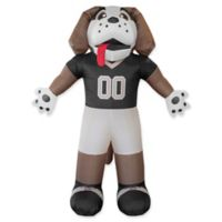 NFL New Orleans Saints Inflatable Mascot