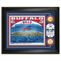 NFL Buffalo Bills Stadium Silver Plated Coins Photo Mint
