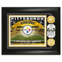 NFL Pittsburgh Steelers Stadium Silver Plated Coins Photo Mint