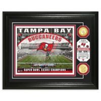 NFL Tampa Bay Buccaneers Stadium Silver Plated Coins Photo Mint