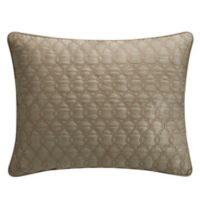Waterford® Amarah 16-Inch x 20-Inch Oblong Throw Pillow in Taupe