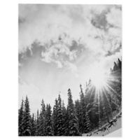 Deny Designs Bird Wanna Whistle White Mountain Canvas 8-Inch x 10-Inch Wall Art in Black