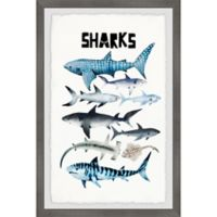 Marmont Hill Sharks 12-Inch x 18-Inch Framed Wall Art