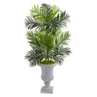 Nearly Natural™ 4-Foot Paradise Palm Tree in White Urn