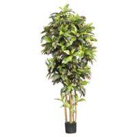 Nearly Natural 6-Foot Artificial Croton Tree