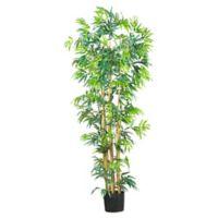 Nearly Natural 6-Foot Artificial Bambusa Bamboo Tree