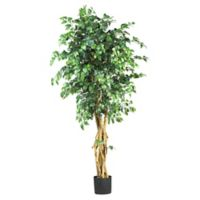 Nearly Natural 6-Foot Artificial Palace-Style Ficus Tree