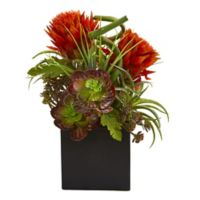 Nearly Natural 13-Inch Artificial Tropical Flower and Succulent with Black Vase (Set of 2)