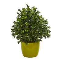 Nearly Natural 17-Inch Sweet Grass Artificial Plant in Green Vase