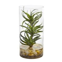 Nearly Natural 12-Inch Artificial Succulent Air Plant in Glass Vase