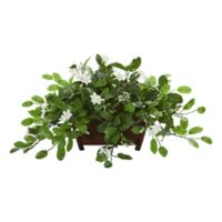 Nearly Natural Artificial Mixed Stephanotis Plant with Planter