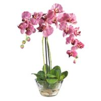 Nearly Natural 18-Inch Artificial Phalaenopsis Flower Arrangement in Purple with Glass Vase