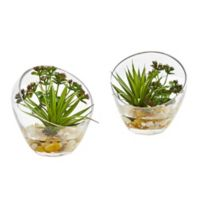 Nearly Natural 6-Inch Artificial Spiky Succulent Plants in Slanted Glass (Set of 2)