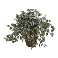 Nearly Natural 20-Inch Wandering Jew Artificial Plant in Decorative Planter