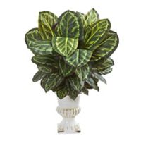 Nearly Natural 33-Inch Maranta Plant with White Urn