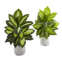 Nearly Natural 20-Inch Dieffenbachia Plants (Set of 2)